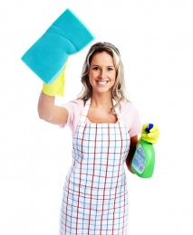 Green and DIY Cleaning Products